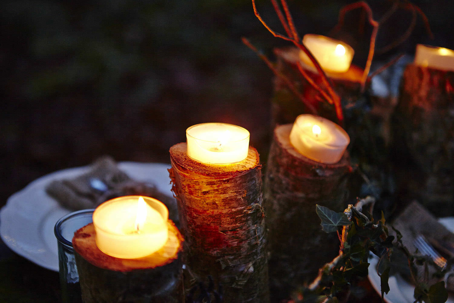 Candles sitting on logs.