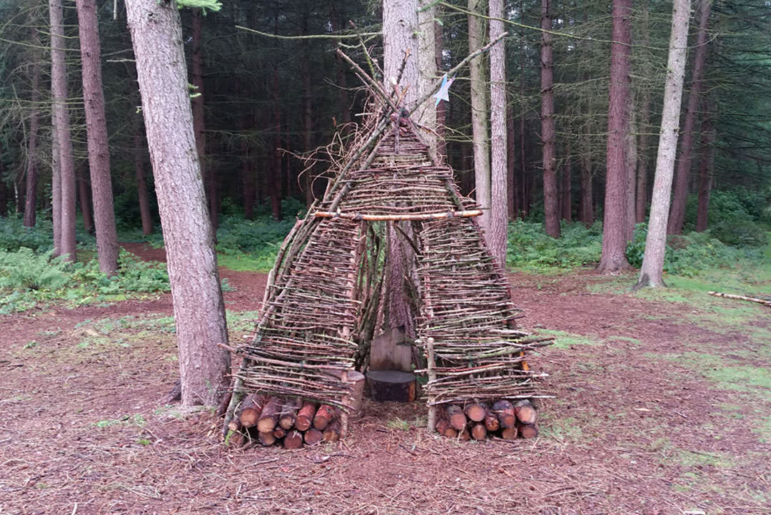 A small teepee made of sticks in a woodland clearing