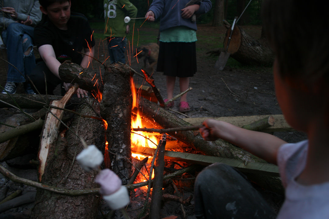 Cooking marshmallows on a campfire