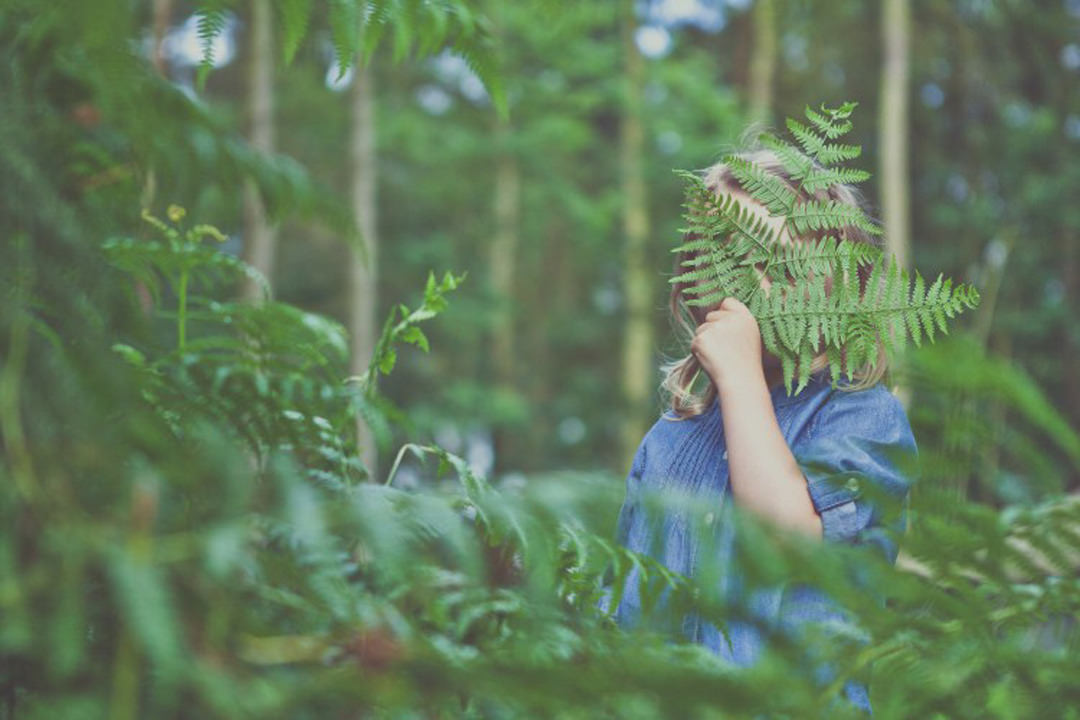 A child in the woods playing with fern leaves